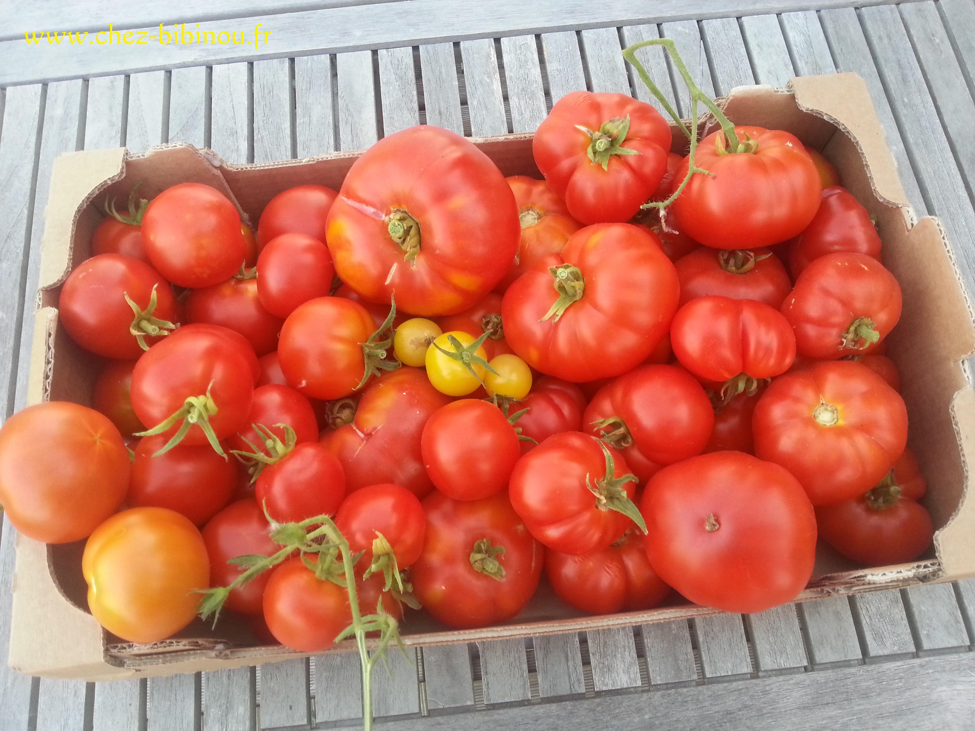 Récoltes colorées et vitaminées
