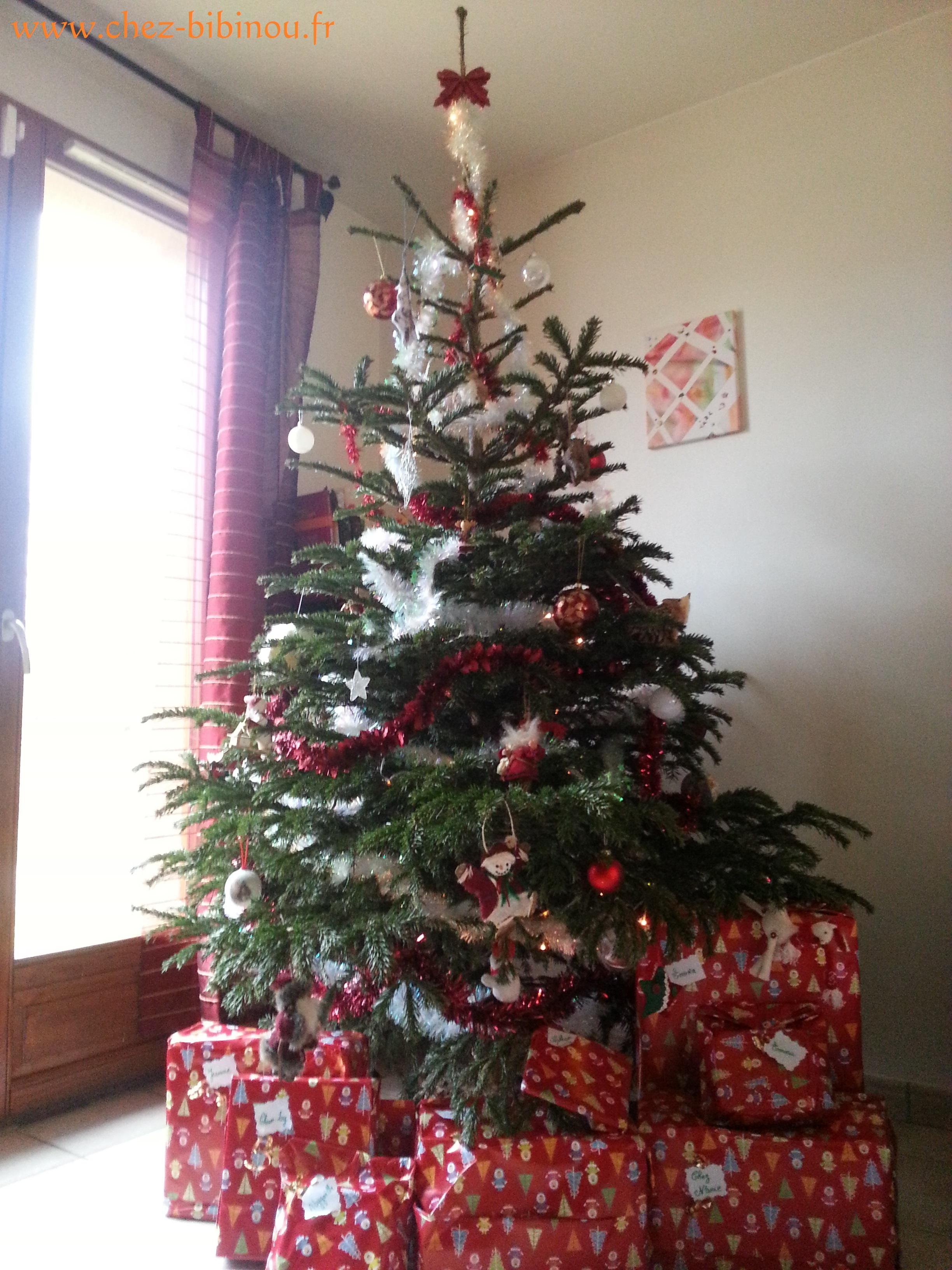 Joyeux Noël les Coccilous !