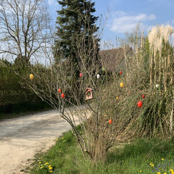 Arbres de Pâques